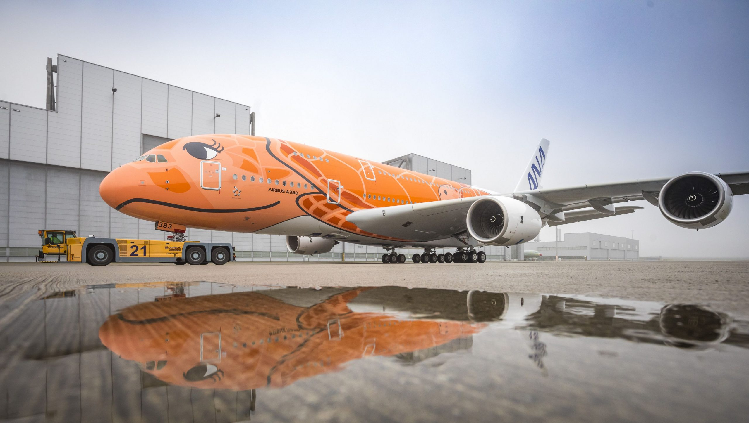 "Delivery Of ANA's Last ""Flying Honu"" A380"